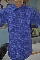 Рубашка для мальчика с коротким рукавом IKORAS