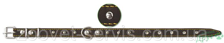 Ошейник кожаный с украшениями 25 мм Classic 313 ТМ Верный друг, фото 2