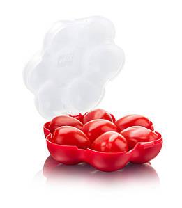 Коробка на помидоры Помидор Guard
