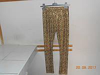 Лосины золотые 34 -36 размеров