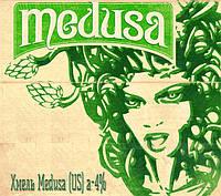 Новое поступление: хмель Medusa США 2017г.