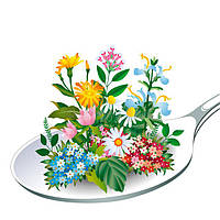 Травы для лечения и профилактики заболеваний и улучшения здоровья