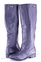 Женские сапоги кожаные, синие V 826