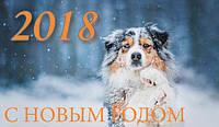 С НОВЫМ 2018 ГОДОМ !!!