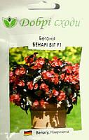 Семена бегонии Бенари Биг F1 красная 3шт