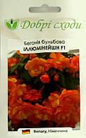 Семена бегонии ампельной Илюминейшн F1 оранжевая 5шт
