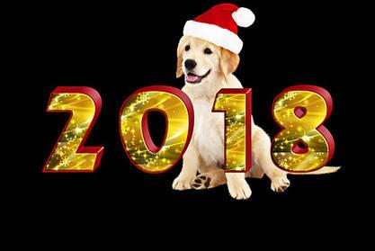 Всех с Новым Годом!!! 2018!!!
