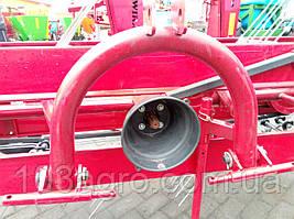 Сінограбарка пасова Wirax, фото 2