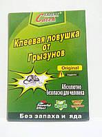 Клеевая ловушка от грызунов,  LY-8601