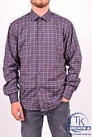 Рубашка мужская  (цв.коричневый/синий) (slim fit)  businessX клетка Размер:44,46,48,50