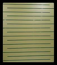 Економпанель кольорова 1220х900мм, без вставок, фото 2
