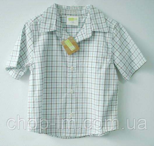 Рубашка для мальчика 2-х лет Crazy8 (рубашка для хлопчика 2-х років)
