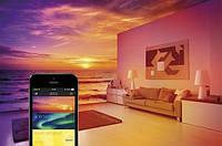 Elgato представила Bluetooth-лампочку за $50 і сенсори Eve для розумного будинку