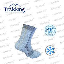 "Зимние трекинговые носки ""ShortWinter""  ТМ ""Trekking"", фото 3"