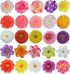 Прессованные цветы для декора