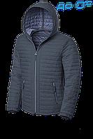 Куртка демисезонная Braggart Evolition - 1295A серая