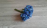 Складні тичинки  (незабудки ) - синій  колір