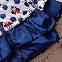Детские куртки. Демисезонная куртка для девочки, фото 2