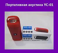 Портативная акустика YC-01