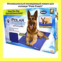 """Инновационный охлаждающий коврик для питомца """"Polar Pooch""""!Акция"""