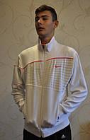 Мужская демисезонная спортивная кофта Nike , фото 1