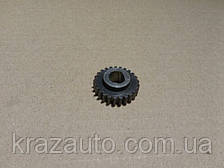 Шестерня привода спидометра (21 зуб) (пр-во МАЗ) 64221-3802055
