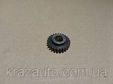Шестерня привода спидометра (24 зуб.) (пр-во МАЗ) 500-3802054