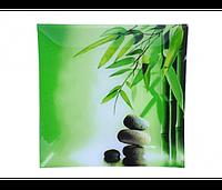 Фруктовница 20см. бамбук SNT 306