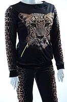 Велюровый женский спортивный костюм 7445