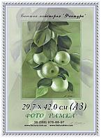 Фоторамка пластиковая А3 (29,7х42), рамка для фото, дипломов, сертификатов, грамот, 2115-14