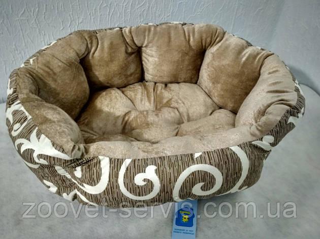 Лежак - диван для собак Теремок Элегант 2 50х40х18 см (0406), фото 2