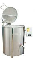 Котел пищеварочный КПЭ-250 с пароводяным нагревом с миксером  Эфес