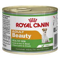 Корм Роял Канин Бьюти Адалт Royal Canin Beauty adult влажный для собак для красоты кожи и шерсти 195