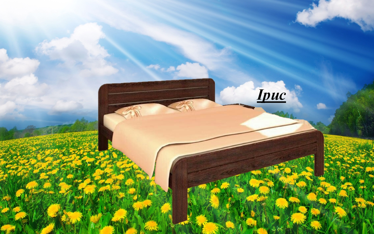 Кровать двухспальная Ірис