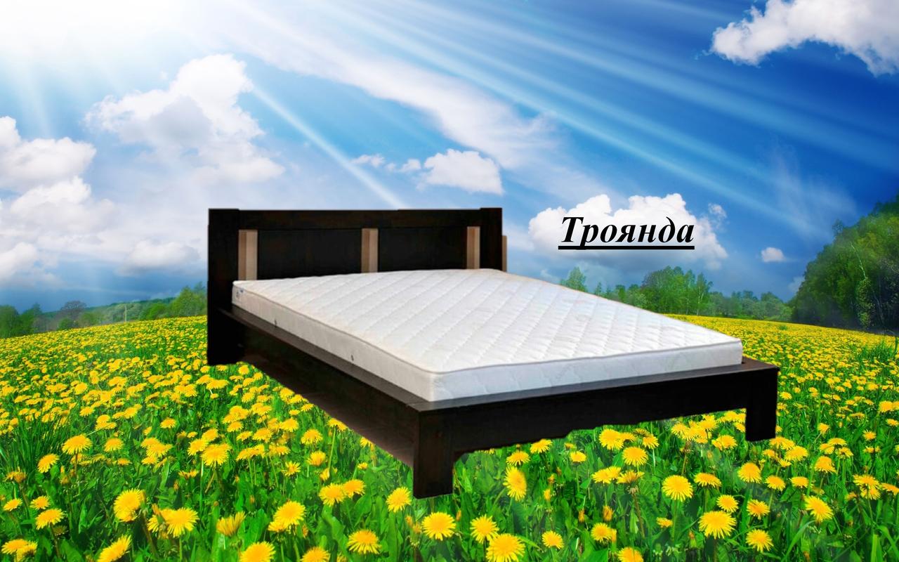 Кровать двухспальная Троянда