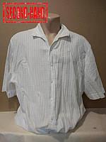 Рубашка мужская 54-56р. Всесезонная;