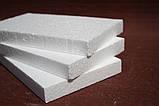 Клей для приклеевания пенополистирольных плит FTS «TERMO 1», 25 кг, фото 2