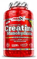 AMIX Creatine Monohydrate 500 caps
