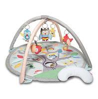 Игровой коврик с дугами Skip hop Обитатели сказочного леса (Pastel)