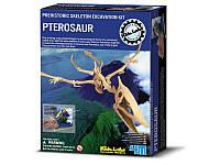 Дет/лаб. Скелет Птерозавр. Раскопки. /6/