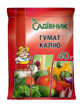 Стимулятор роста Гумат Калия (Садівник) 40 г — ускорение созревания плодов и увеличение урожайности, фото 2