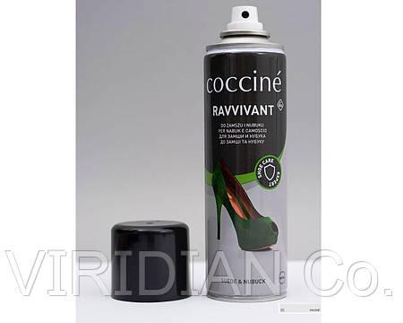 RAVVIVANT SPRAY Восстанавливающий спрей для замшы и нубука 250ml  / NEUTRAL /