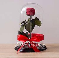 Красная роза в стеклянной колбе (32см)