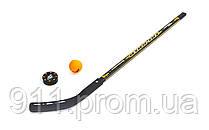 Набор клюшка, шайба, мяч дли игры на льду или траве TG-3101