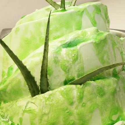 Алое вера Арома пасти для кондитерських виробів, фасування 1 кг та 3,5 кгта морозива Cremo Linea, фото 2