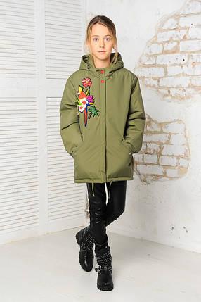"""Демисезонная куртка - парка для девочек """"Попугай"""", фото 2"""