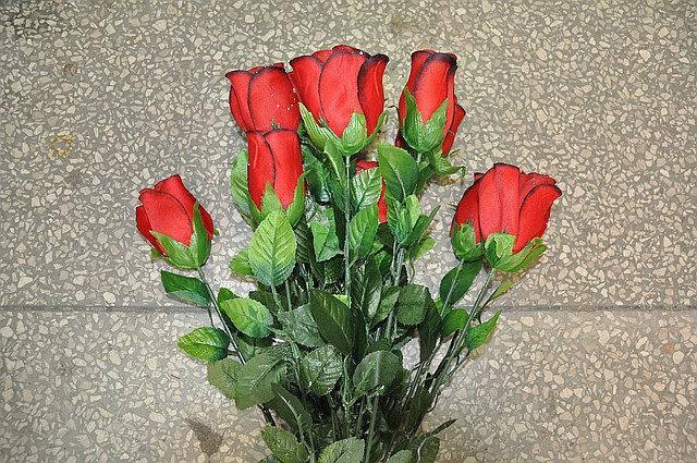 Роза с росой , декоративная , фото 2
