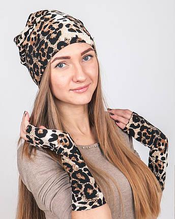 Нарукавники zinamagazin S-M-L леопард н200, фото 2