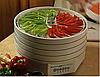 Как выбрать сушилку для фруктов и овощей; ягод и грибов?