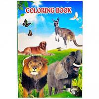 """Раскраска А5 с наклейками """"Животные"""""""